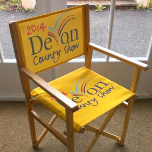 NEW - Director Chair
